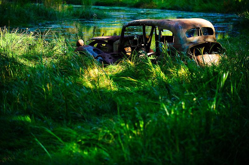 Swamp Wreck