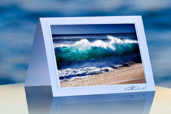 Beach Curl_prod