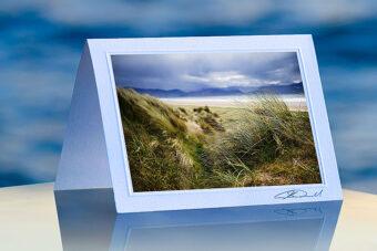 Inch Beach Grass_prod