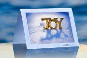 Joy-Shadow__prod