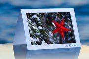 Red Star_prod