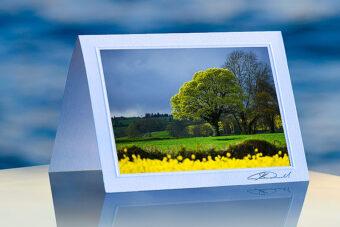 Springtime in Ireland_prod
