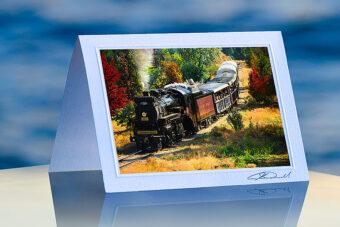 Steam Trainr_prod