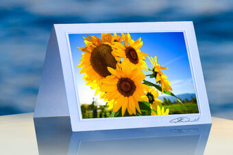 Sunflower Bunch_prod
