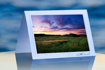 Sunset Field_prod