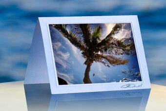 Underwater Palm_prod