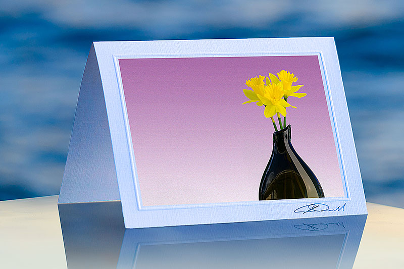 Daffodil Vase Lavish Cards Fine Art Corporate Greeting Cards