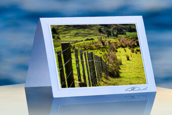 Fence on the hill_prod