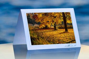 Gilded Landscape_prod