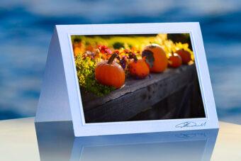 Pumpkin Perch_prod