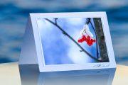 Snow Berries_prod
