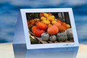 Pumpkin Shades _prod