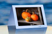 Triple Pumpkins_prod