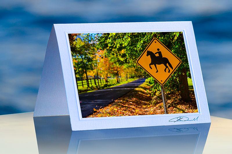 Horse crossing lavish cards fine art corporate greeting cards horse crossingprod m4hsunfo