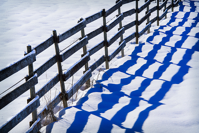 Shadow Fence